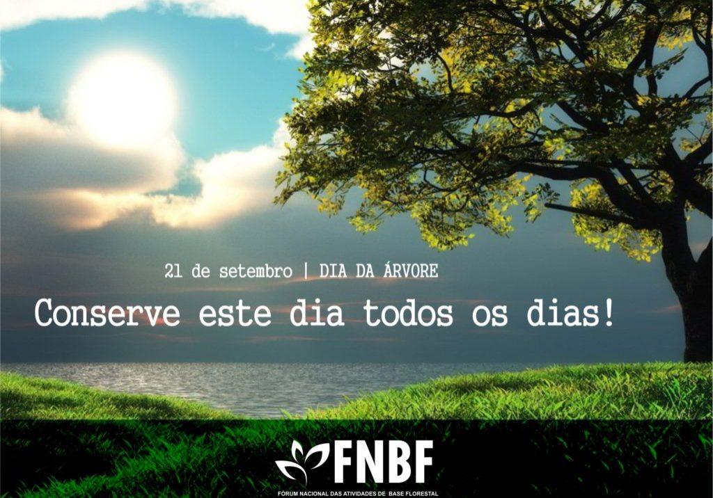 fnbf-dia-da-arvore